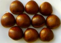 Bunch_of_chestnuts