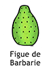 CactusPear_French_250x350