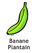 Plantain_French250x350