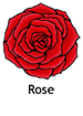 Rose_French250x350