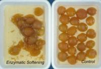 apricot_enzymatic_soft