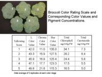 Broccoli_color_vs_pigments960x720