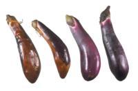 eggplant_sun_scald