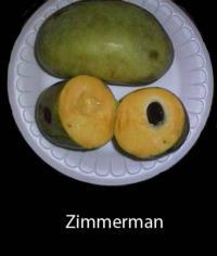 pawpaw-Zimmerman