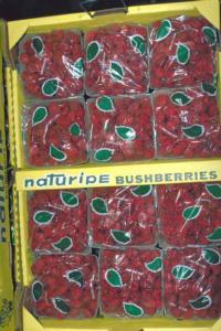 raspberries-packaged