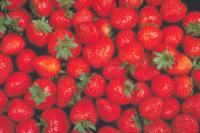 strawberry_quality