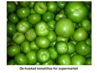 Tomatillo-dehusked960x720