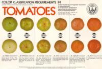 tomato_USDA_color_chart