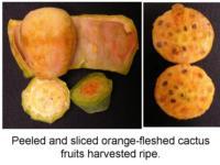 Peeled_and_sliced_cactus_pear
