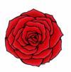 rose018