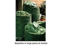 Nopalitos_in_large_packs