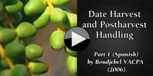 Date (Spanish) part1