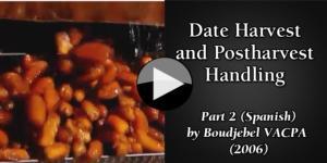 Date (Spanish) part2