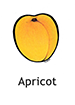 apricot_english250x350
