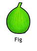 fig_english250x350