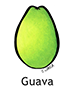 guava_english250x350