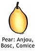 pearabc_english250x350
