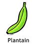 plantain_english250x350