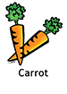 carrot_english250x350