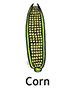 corn_english250x350
