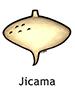 jicama_english250x350