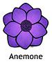 anemone_english250x350