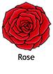 rose_english250x350