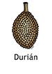 durian_spanish250x350