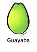 guava_spanish250x350