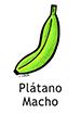 plantain_spanish250x350