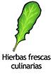 herbs_spanish250x350