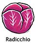 radicchio_spanish250x350