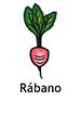 radish_spanish250x350