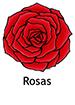 rose_spanish250x350