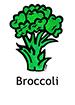 Broccoli_French250x350