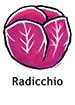 Radicchio_French250x350