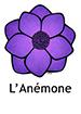 Anemone_French250x350