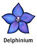 Delphinium_French250x350