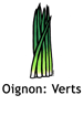 Oignon Verts