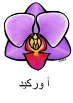 Orchid Arabic
