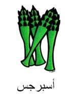 Asparagus Arabic