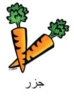 Carrot Arabic