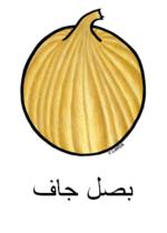 Onion Arabic