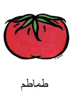 Tomato Arabic