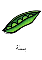 Peas Arabic