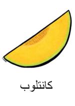 Cantaloupe Arabic