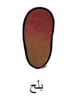 Date Arabic