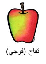Fuji Arabic