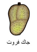 Jackfruit Arabic