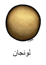 Longan Arabic